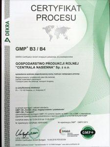 GMP B3/B4